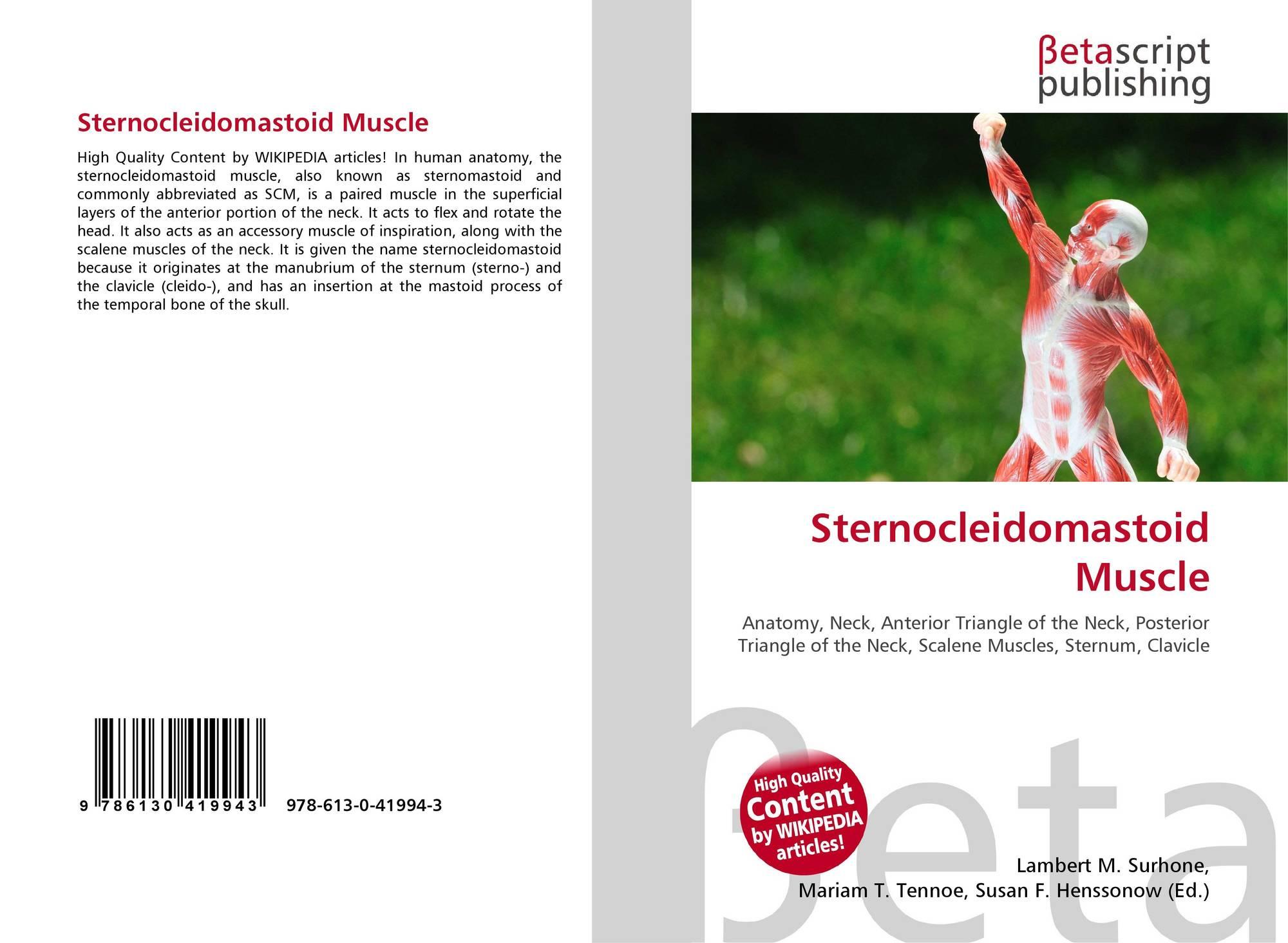 Sternocleidomastoid Muscle 978 613 0 41994 3 6130419945 9786130419943
