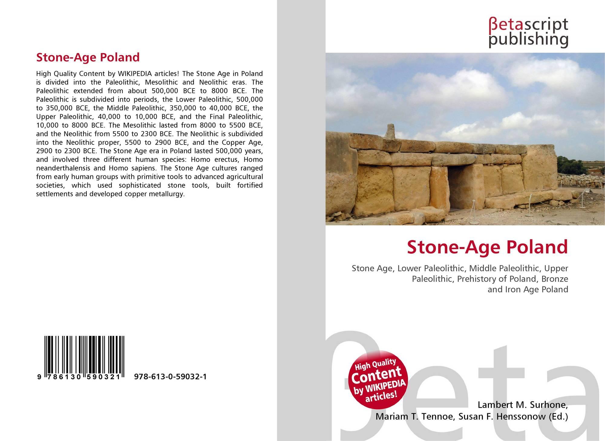stone age advancements