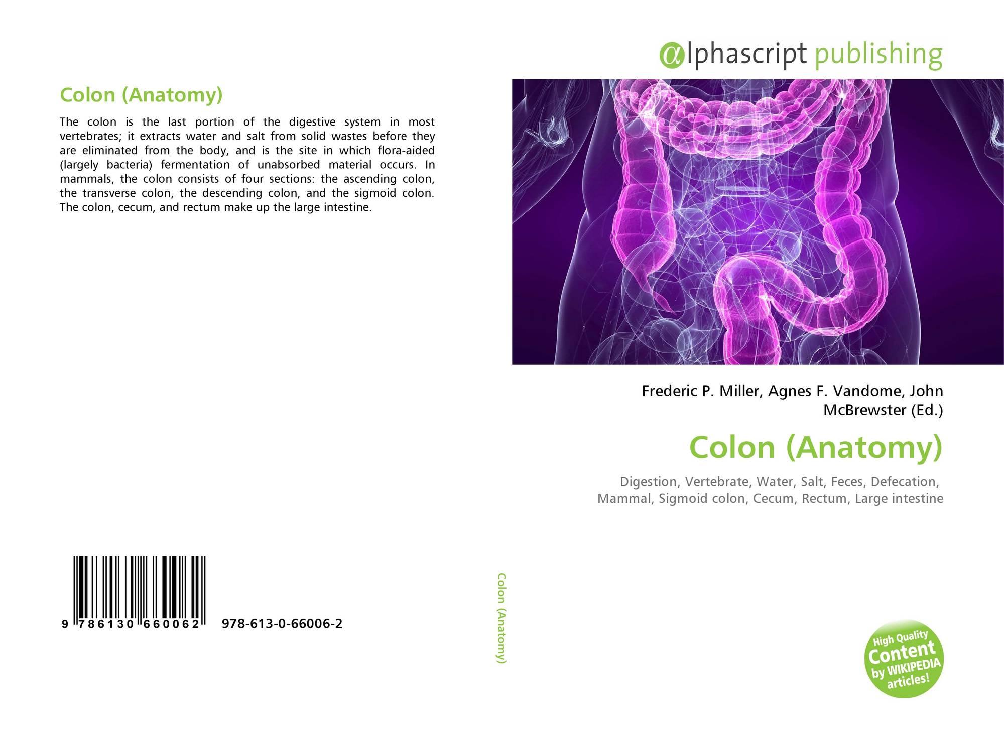 Colon Anatomy 978 613 0 66006 2 6130660065 9786130660062