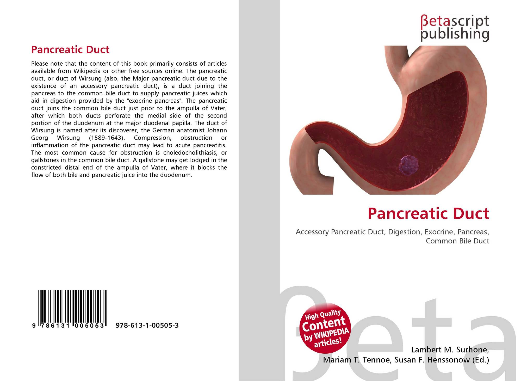 Pancreatic Duct 978 613 1 00505 3 6131005052 9786131005053
