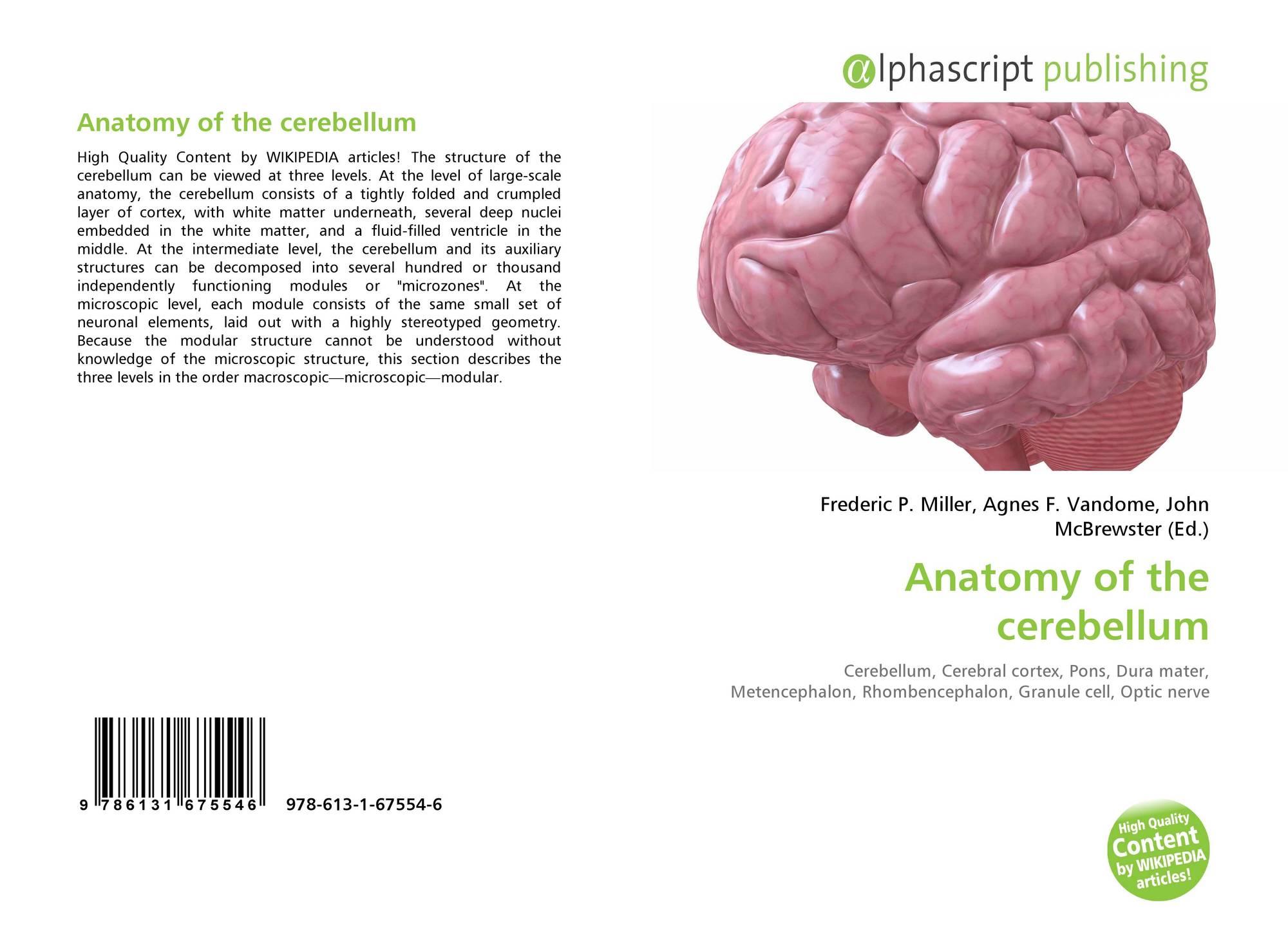 Anatomy of the cerebellum, 978-613-1-67554-6, 6131675546 ,9786131675546