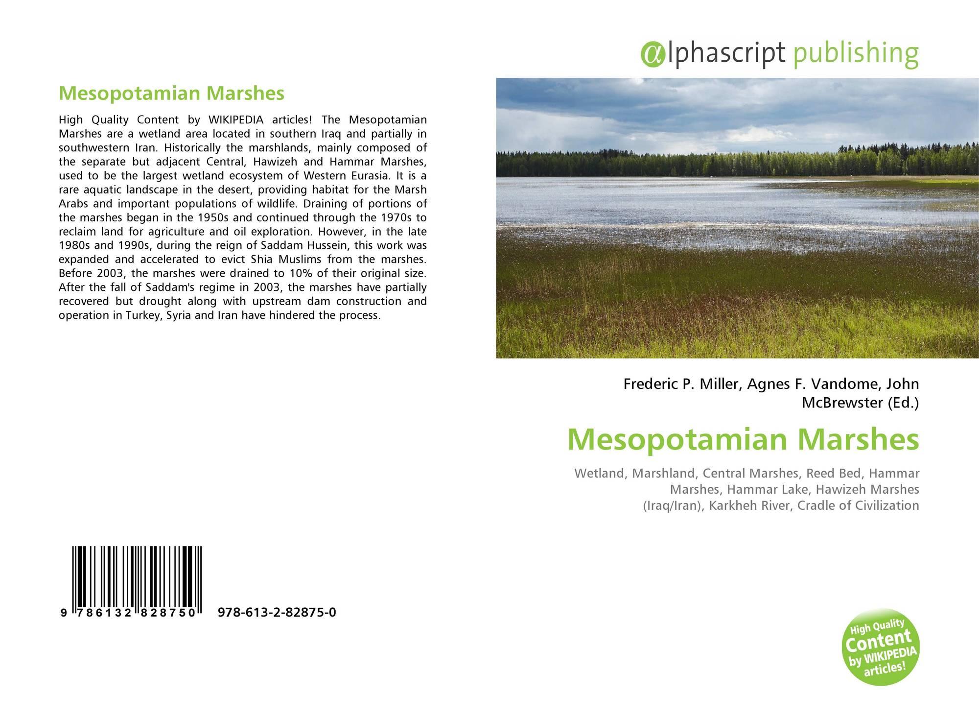 salt marshes unique ecosystems essay