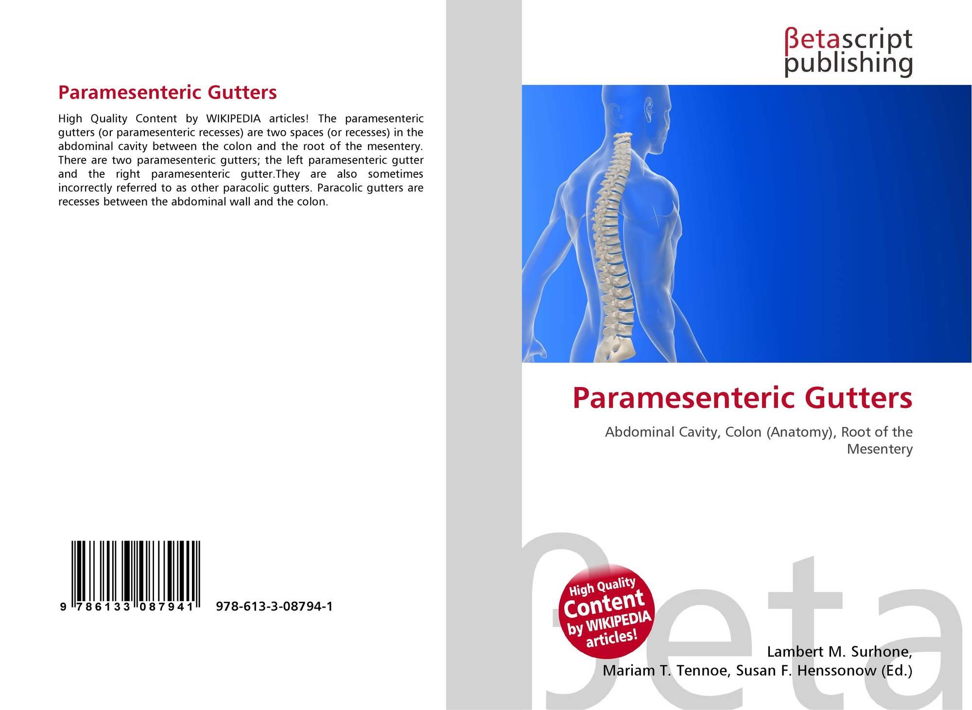Paramesenteric Gutters 978 613 3 08794 1 6133087943 9786133087941