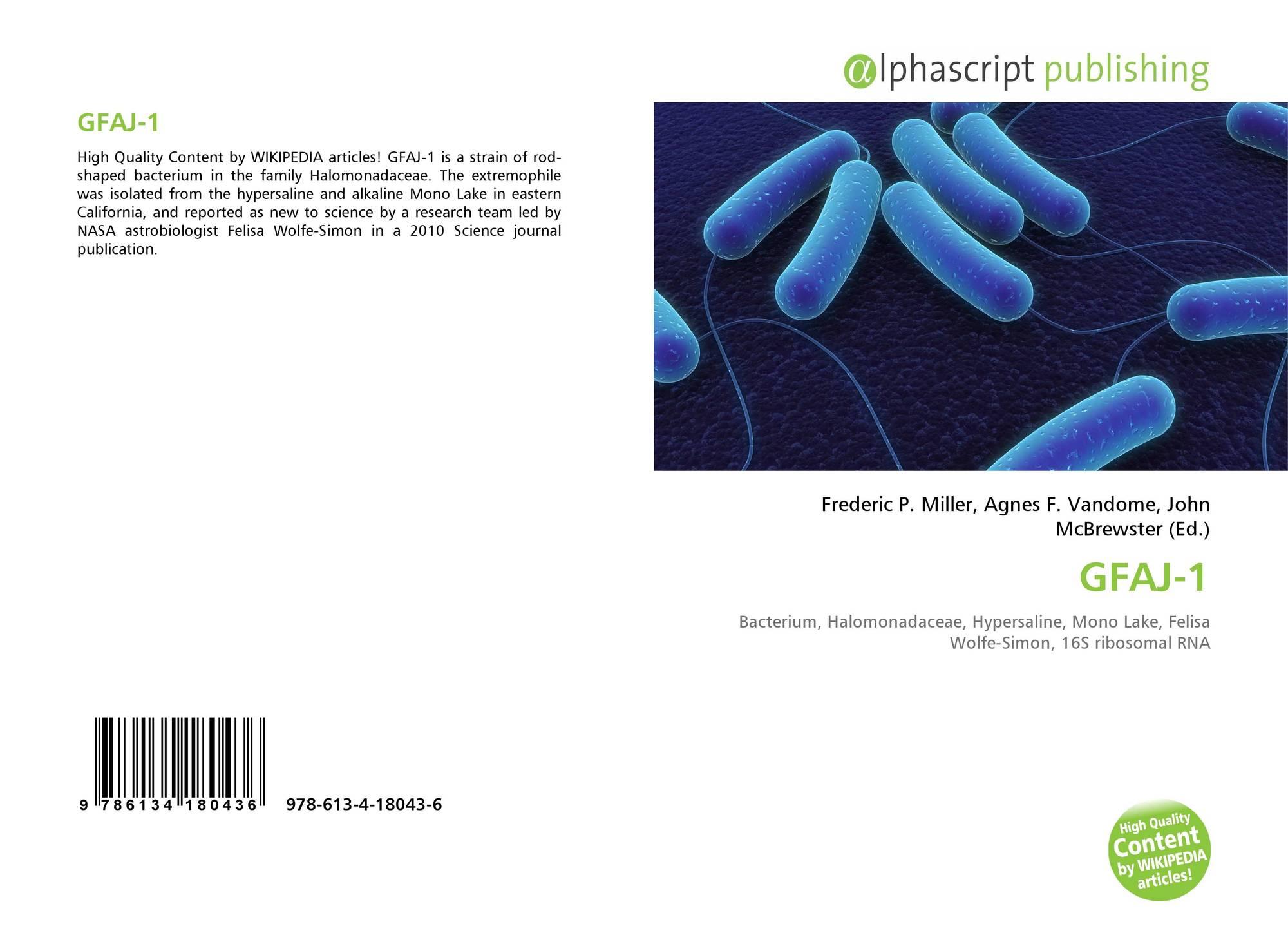 book Digitale Ungleichheit 2006