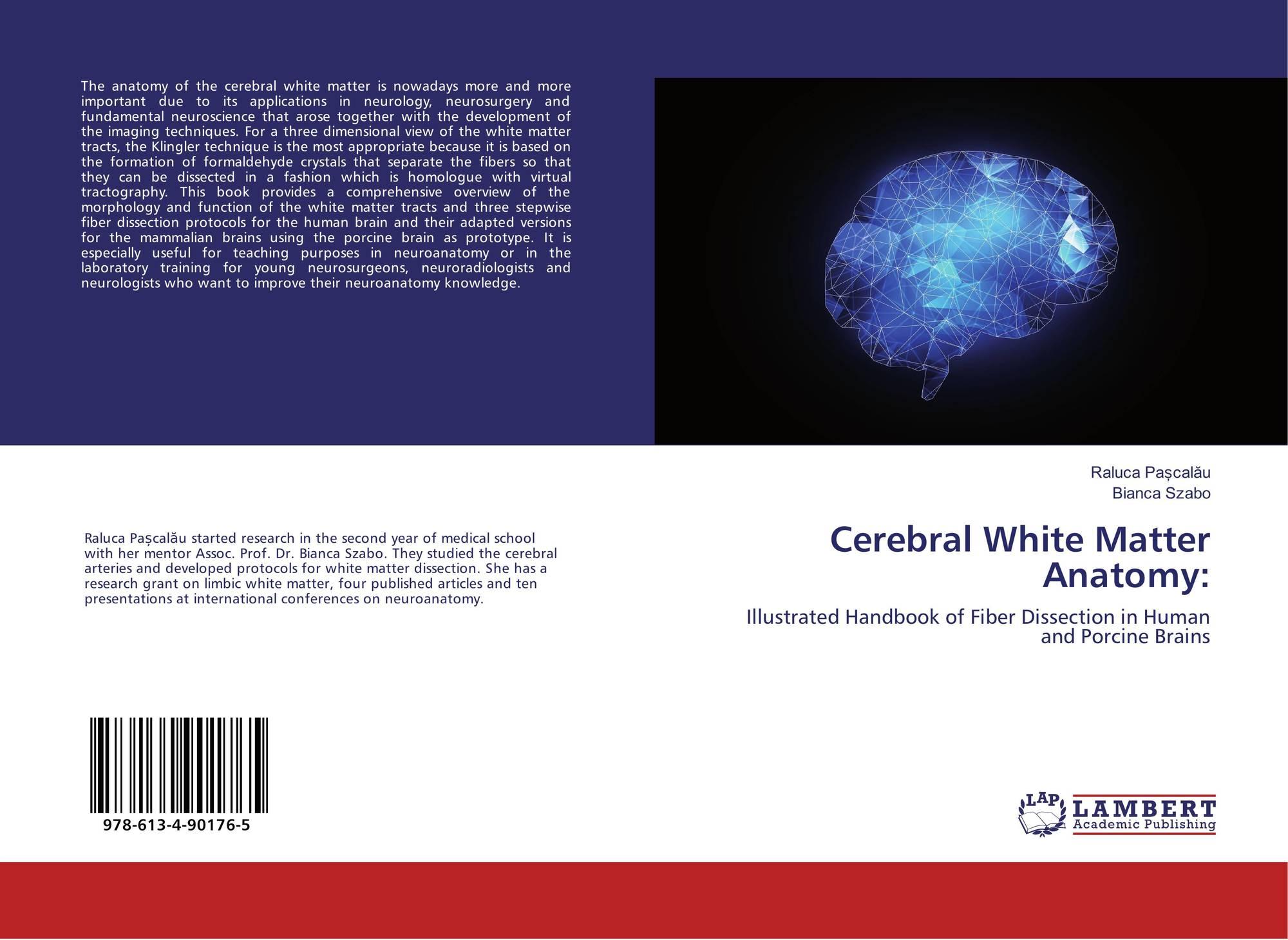 Cerebral White Matter Anatomy:, 978-613-4-90176-5, 6134901768 ...
