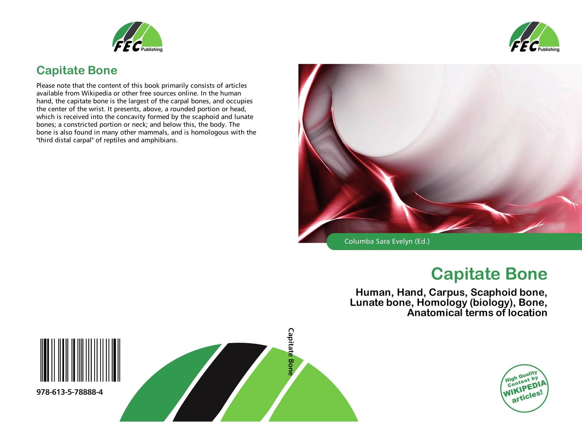 Capitate Bone, 978-613-5-78888-4, 6135788884 ,9786135788884