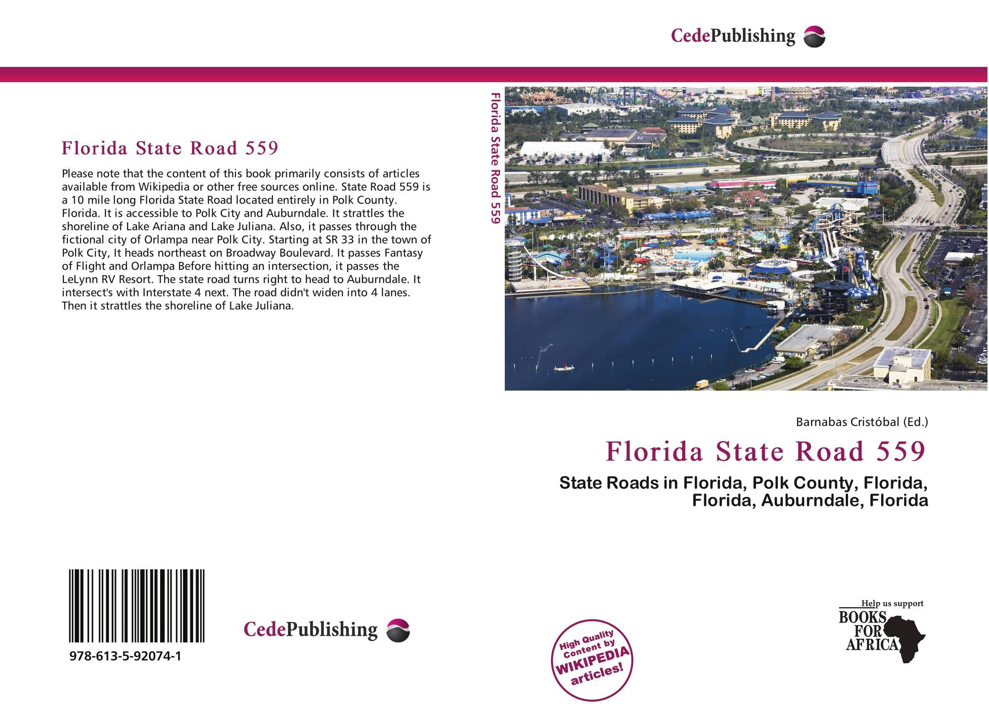 an analysis of the state of florida A connected analytical community to benefit florida the fciaa was organized to create a state-sanctioned set of standards for all fields of criminal analysis.