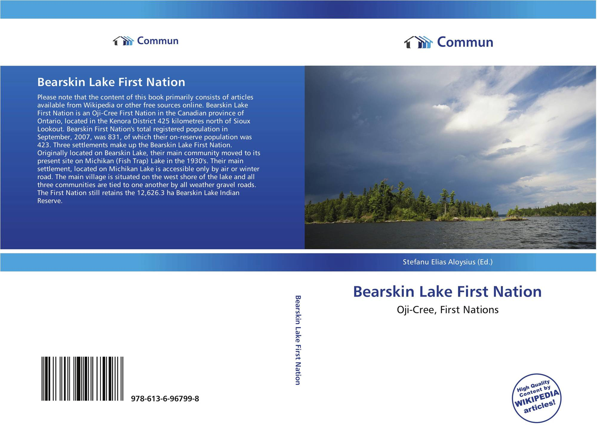 7e683c1ccd9 Bookcover of Bearskin Lake First Nation