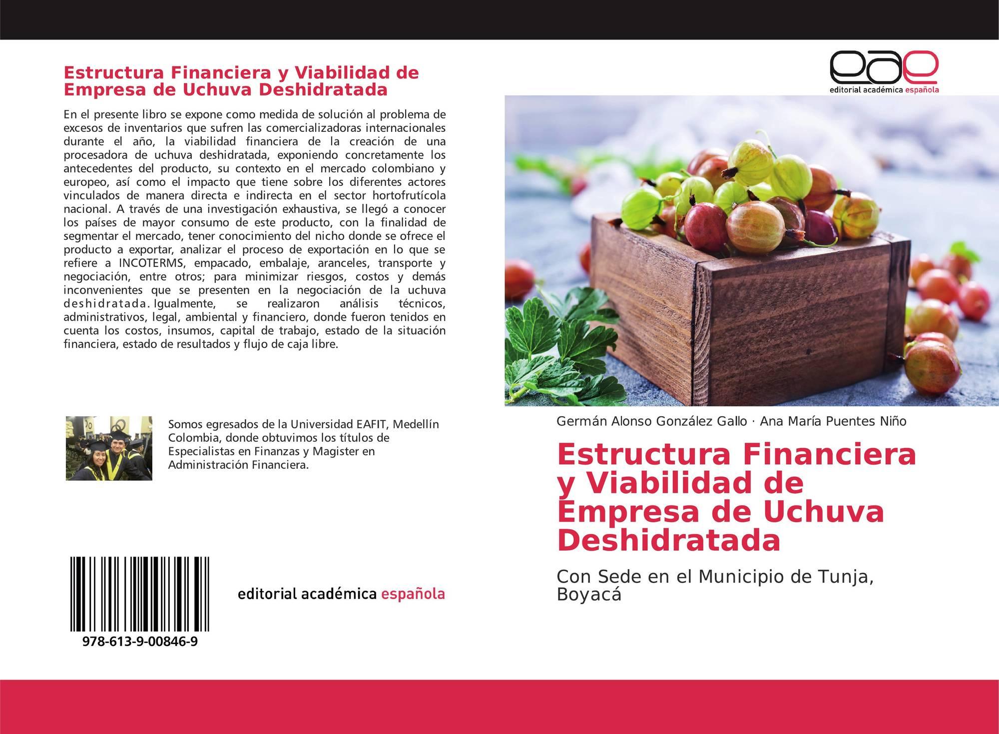 Estructura Financiera Y Viabilidad De Empresa De Uchuva