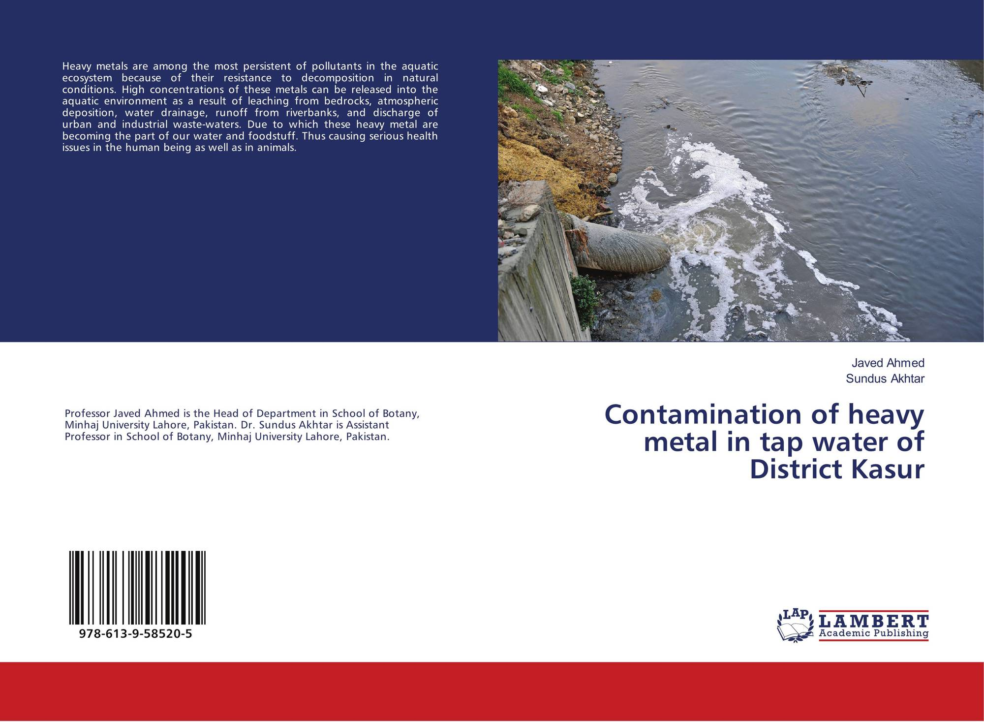 heavy metals contamination in water pdf