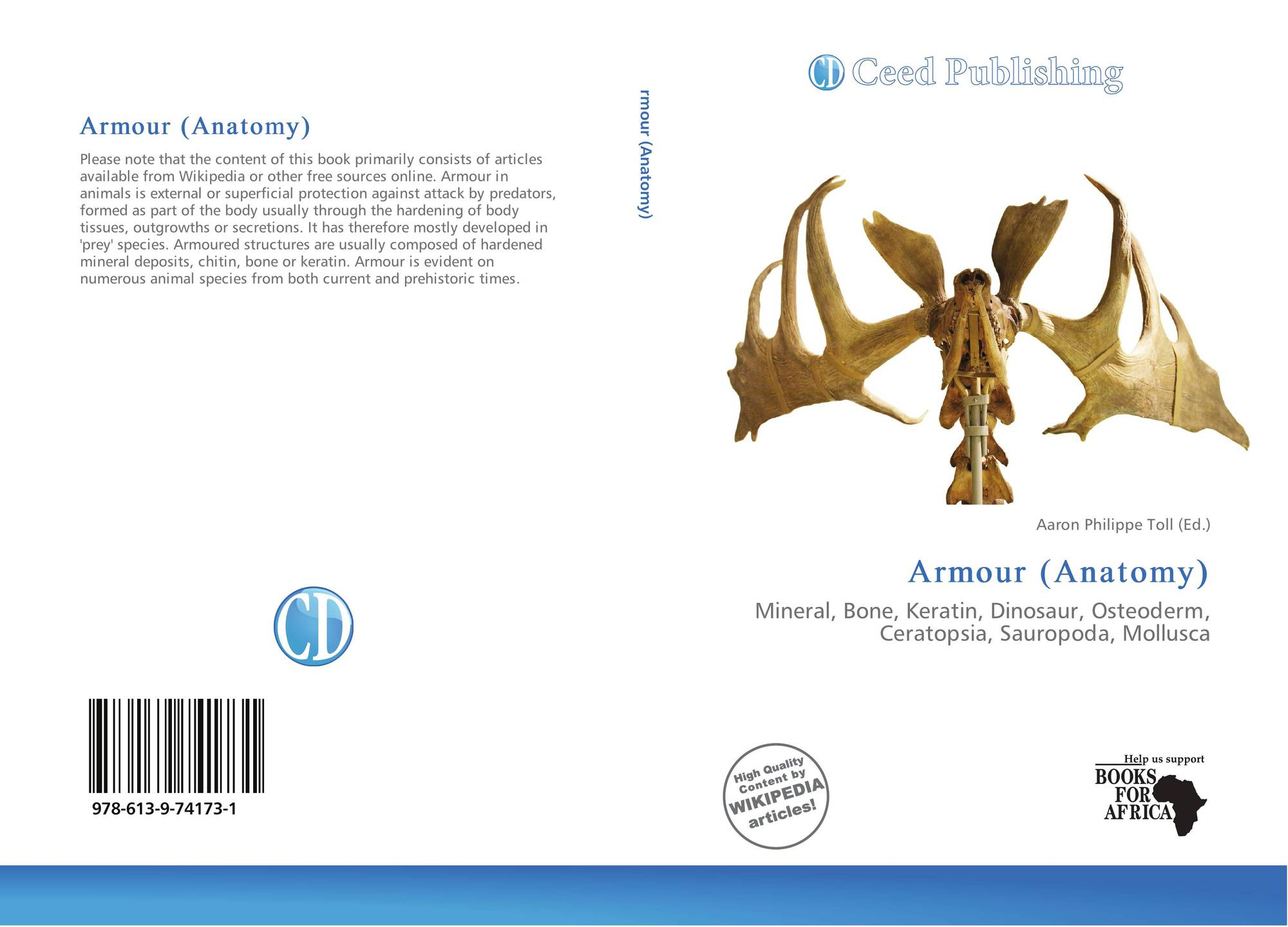 Bookcover Of Armour Anatomy