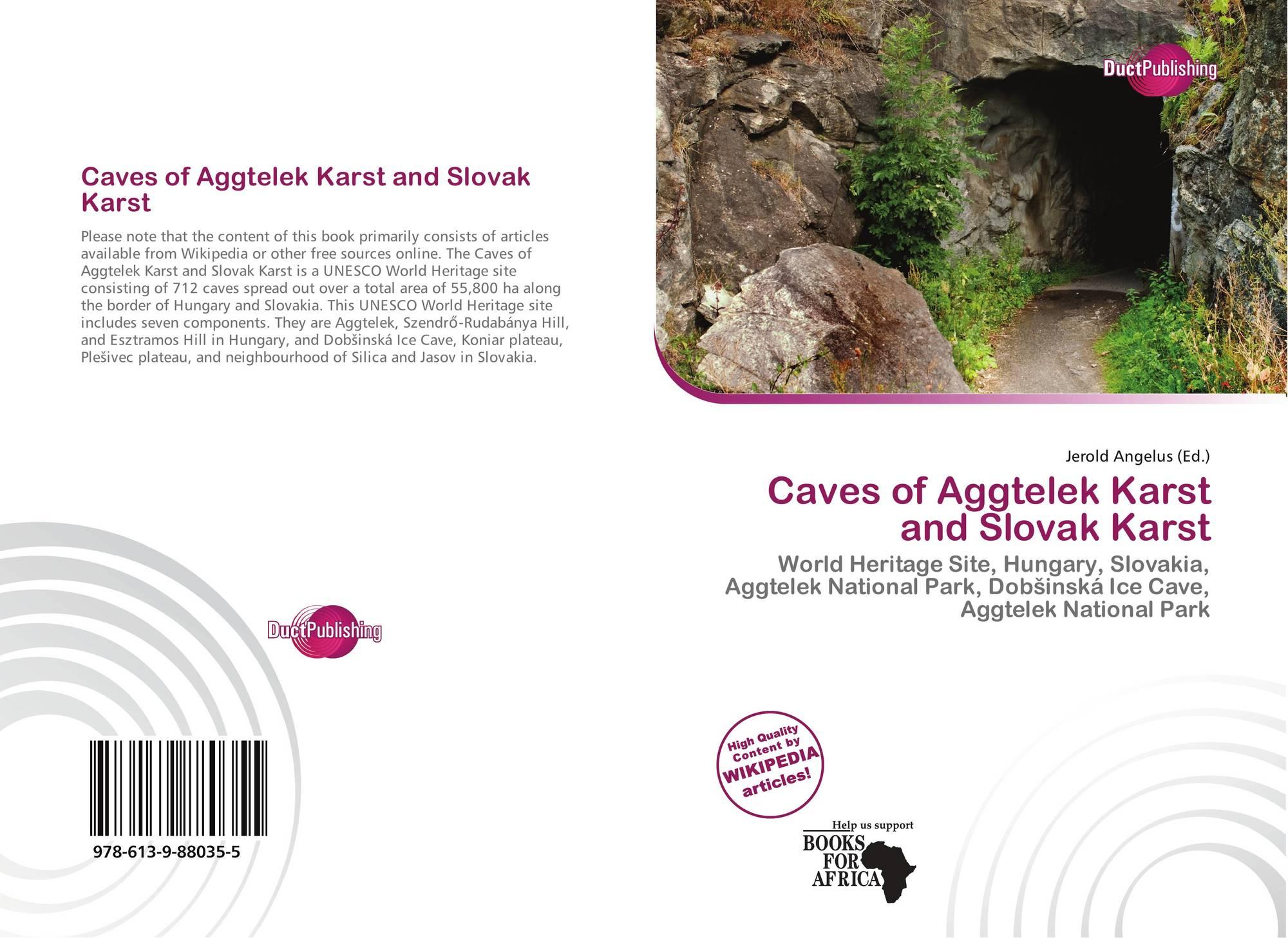 karst hydrogeology and geomorphology pdf