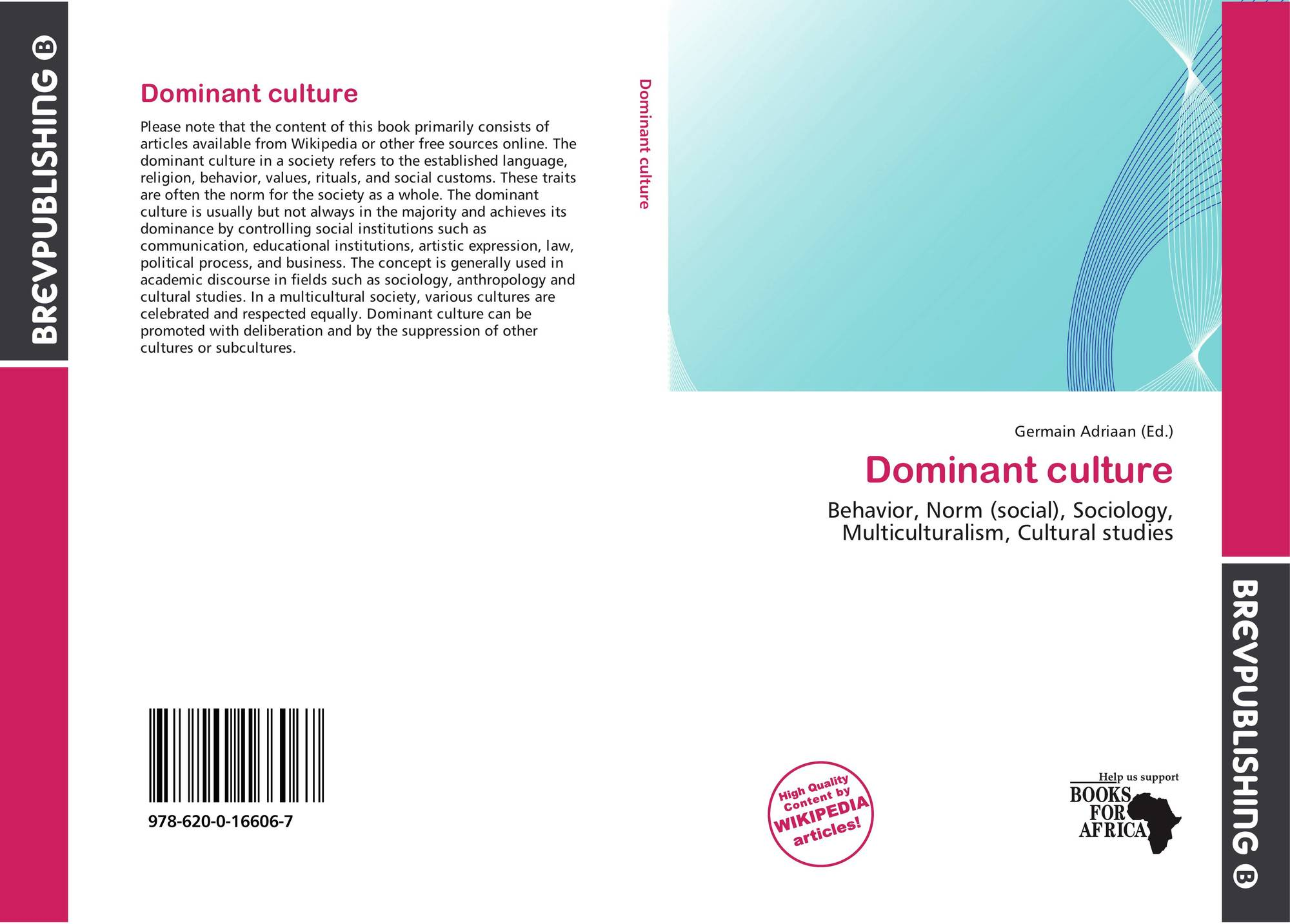 dominant culture The idea of a dominant culture is elusive and uncomfortable, so most people don't think or talk about it except in brief references or symbols.