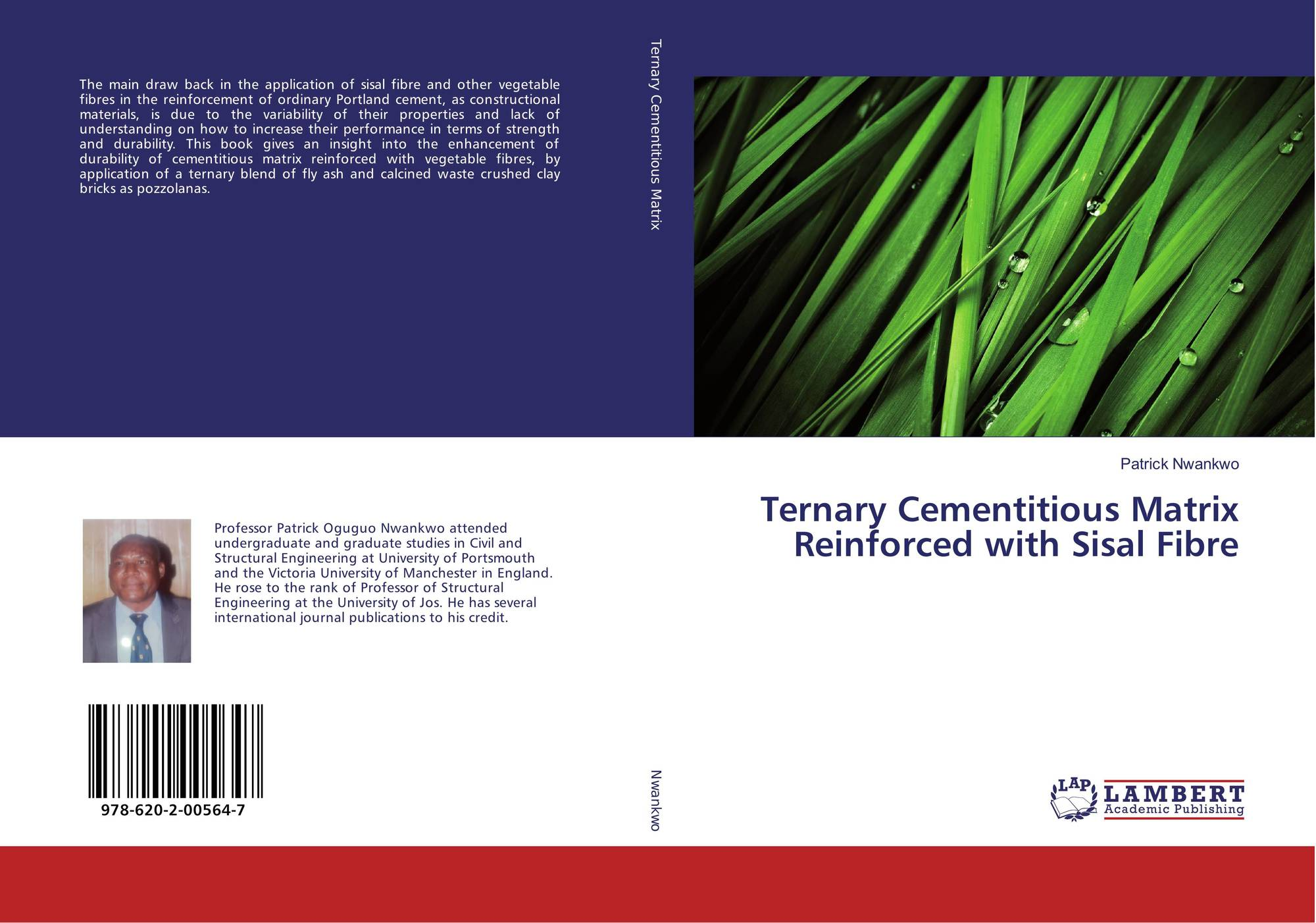 Ternary Cementitious Matrix Reinforced with Sisal Fibre, 978-620-2