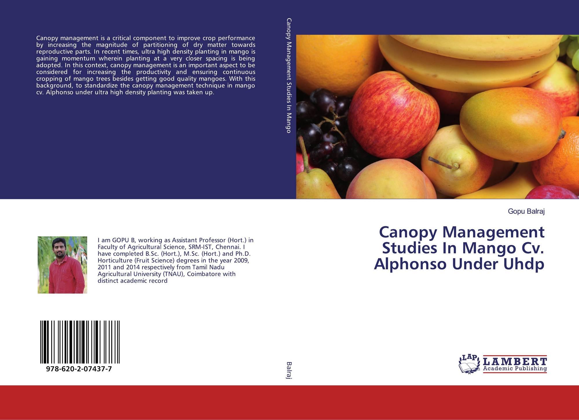Canopy Management Studies In Mango Cv  Alphonso Under Uhdp