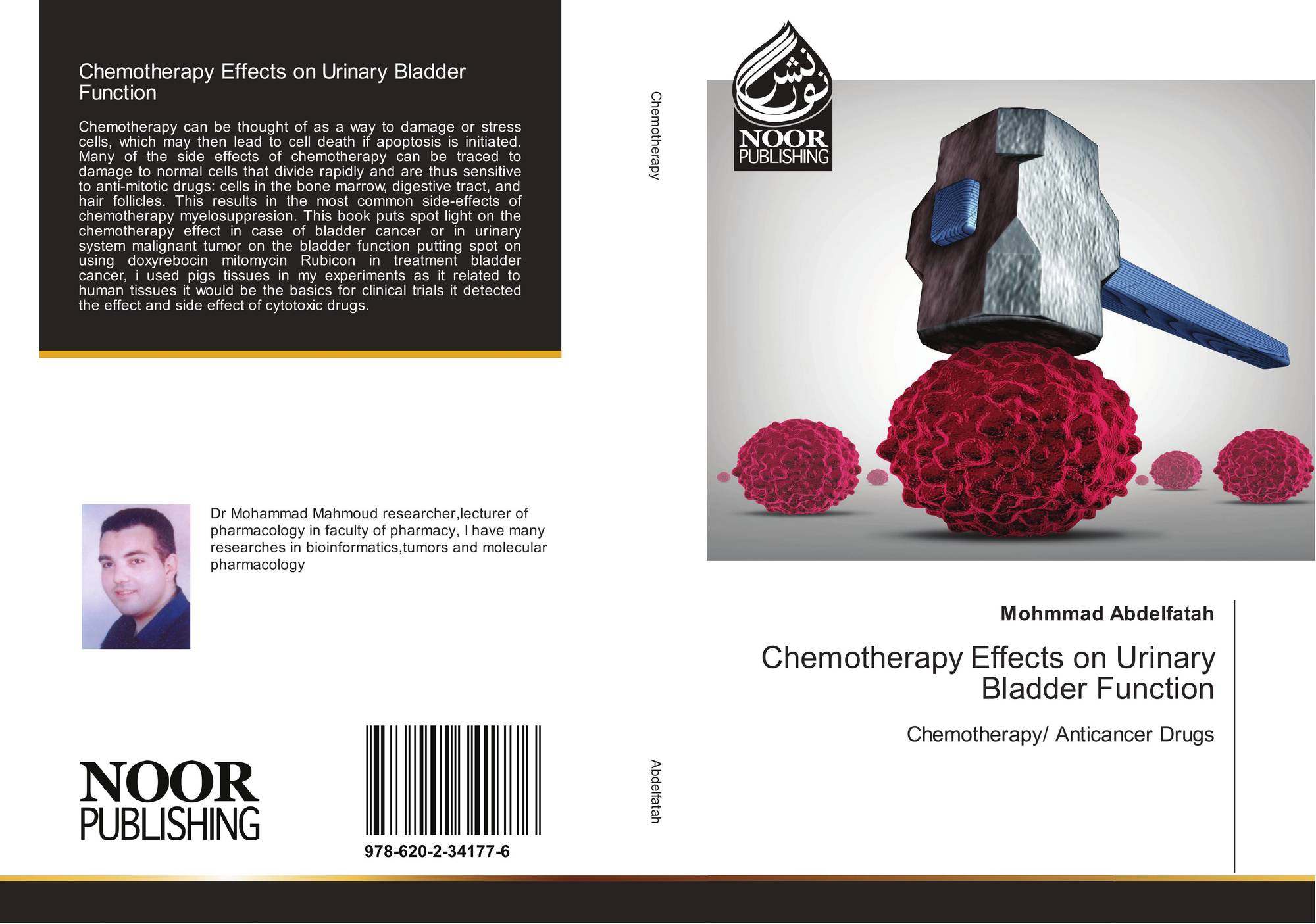 Chemotherapy Effects On Urinary Bladder Function 978 620 2 34177 6