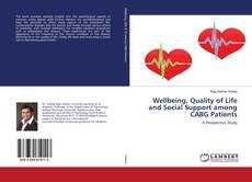 Bookcover of Wellbeing, Quality of Life and Social Support among CABG Patients