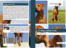 Bookcover of A dog called Colt
