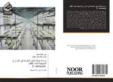 Bookcover of دراسة صفة تحمل الملوحة في المزارع النسيجية لنبات الفلفل C. annuum