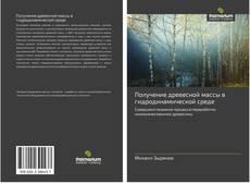 Bookcover of Получение древесной массы в гидродинамической среде
