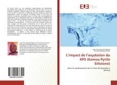 Bookcover of L'impact de l'oxydation du KPS (Kamoa Pyrite Siltstone)