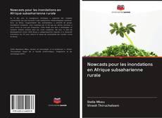 Capa do livro de Nowcasts pour les inondations en Afrique subsaharienne rurale