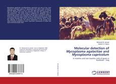 Обложка Molecular detection of Mycoplasma agalactiae and Mycoplasma capricolum
