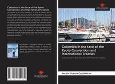 Bookcover of Colombia in the face of the Kyoto Convention and International Treaties