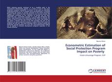 Bookcover of Econometric Estimation of Social Protection Program Impact on Poverty