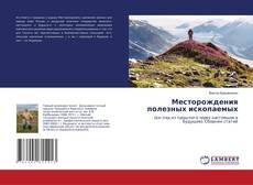 Bookcover of Месторождения полезных ископаемых