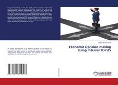 Обложка Economic Decision-making Using Interval TOPSIS