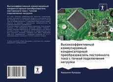 Bookcover of Высокоэффективный коммутируемый конденсаторный преобразователь постоянного тока с точкой подключения нагрузки