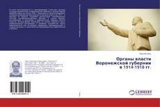 Buchcover von Органы власти Воронежской губернии в 1914-1918 гг.