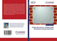 Tuğla Duvarların Delikli Çelik Levhalarla Güçlendirilmesi kitap kapağı
