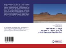 Bookcover of Pampas de la Joya Hyperarid Desert and its astrobiological implication