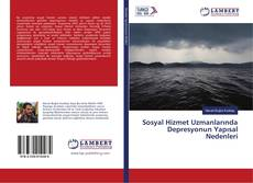 Bookcover of Sosyal Hizmet Uzmanlarında Depresyonun Yapısal Nedenleri