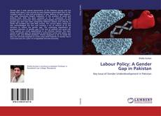Capa do livro de Labour Policy: A Gender Gap in Pakistan