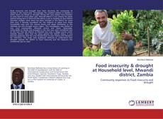 Bookcover of Food insecurity & drought at Household level, Mwandi district, Zambia