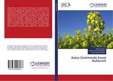 Bookcover of Kolza Üretiminde Enerji Kullanımı