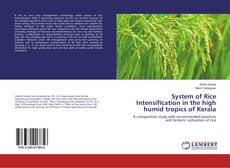 Bookcover of System of Rice Intensification in the high humid tropics of Kerala