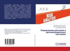 Portada del libro de Управление рисками в организационных системах