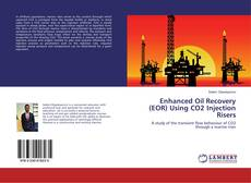 Enhanced Oil Recovery (EOR) Using CO2 Injection Risers kitap kapağı
