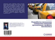 Bookcover of Разработка механизма совершенствования организации трафика мегаполиса