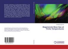 Degenerate Bose Gas at Finite Temperatures的封面
