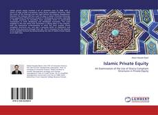 Bookcover of Islamic Private Equity