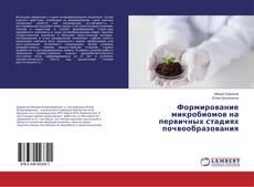 Borítókép a  Формирование микробиомов на первичных стадиях почвообразования - hoz