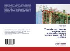 Portada del libro de Устройство группы монолитных железобетонных колон, высотой 6,5 метров