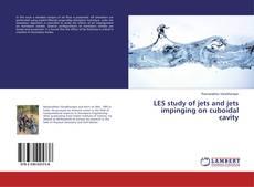 Capa do livro de LES study of jets and jets impinging on cuboidal cavity
