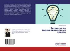 Bookcover of Экскурсии по физике:виртуальный подход