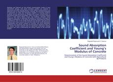 Bookcover of Sound Absorption Coefficient and Young's Modulus of Concrete